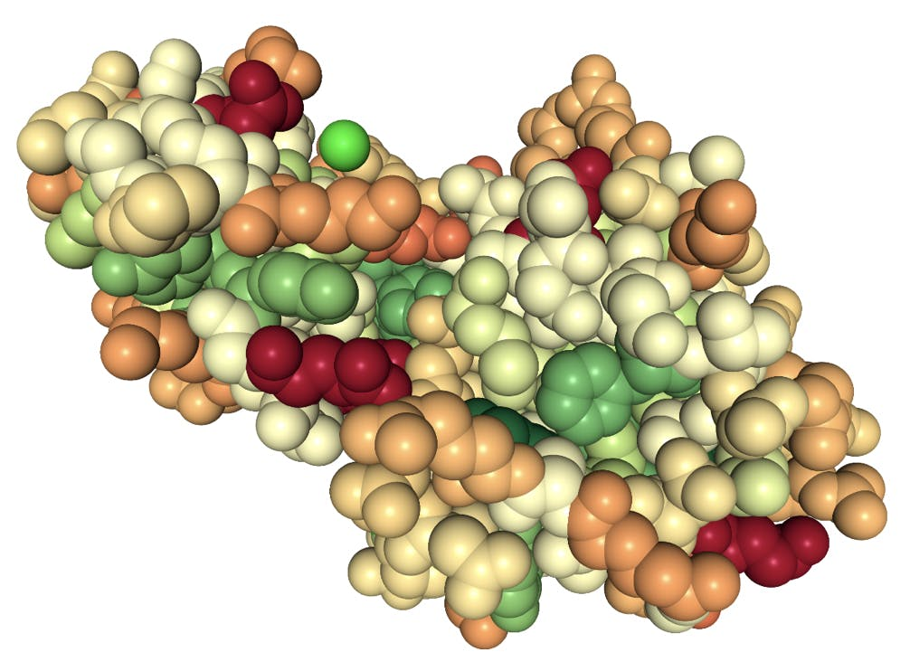 space fill model of a lysozyme protein