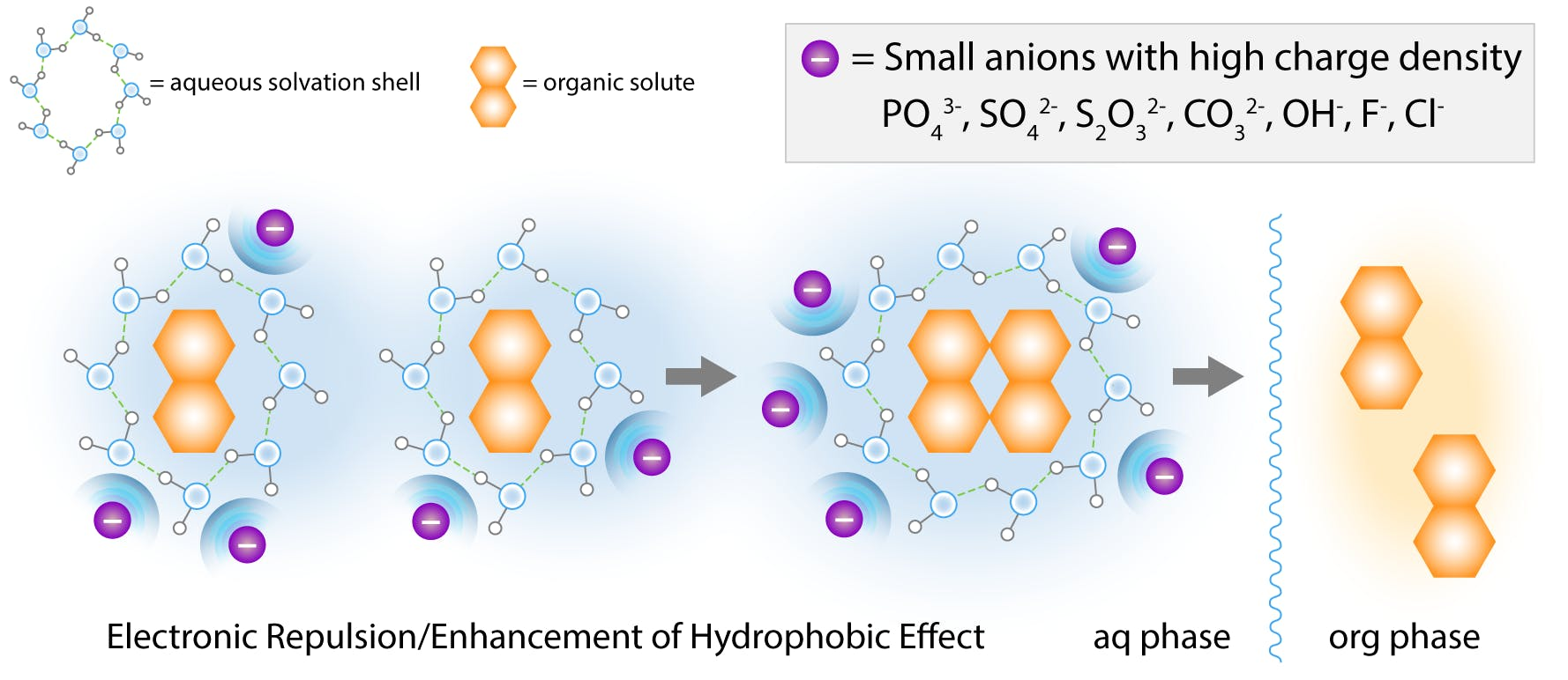 """salting out effect by small """"hard"""" anions according to the cavity model"""
